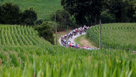 Los verdes campos franceses le pusieron marco a la quinta etapa del Tour. (AP)